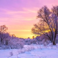 Cold winter landscape with snow and sunset