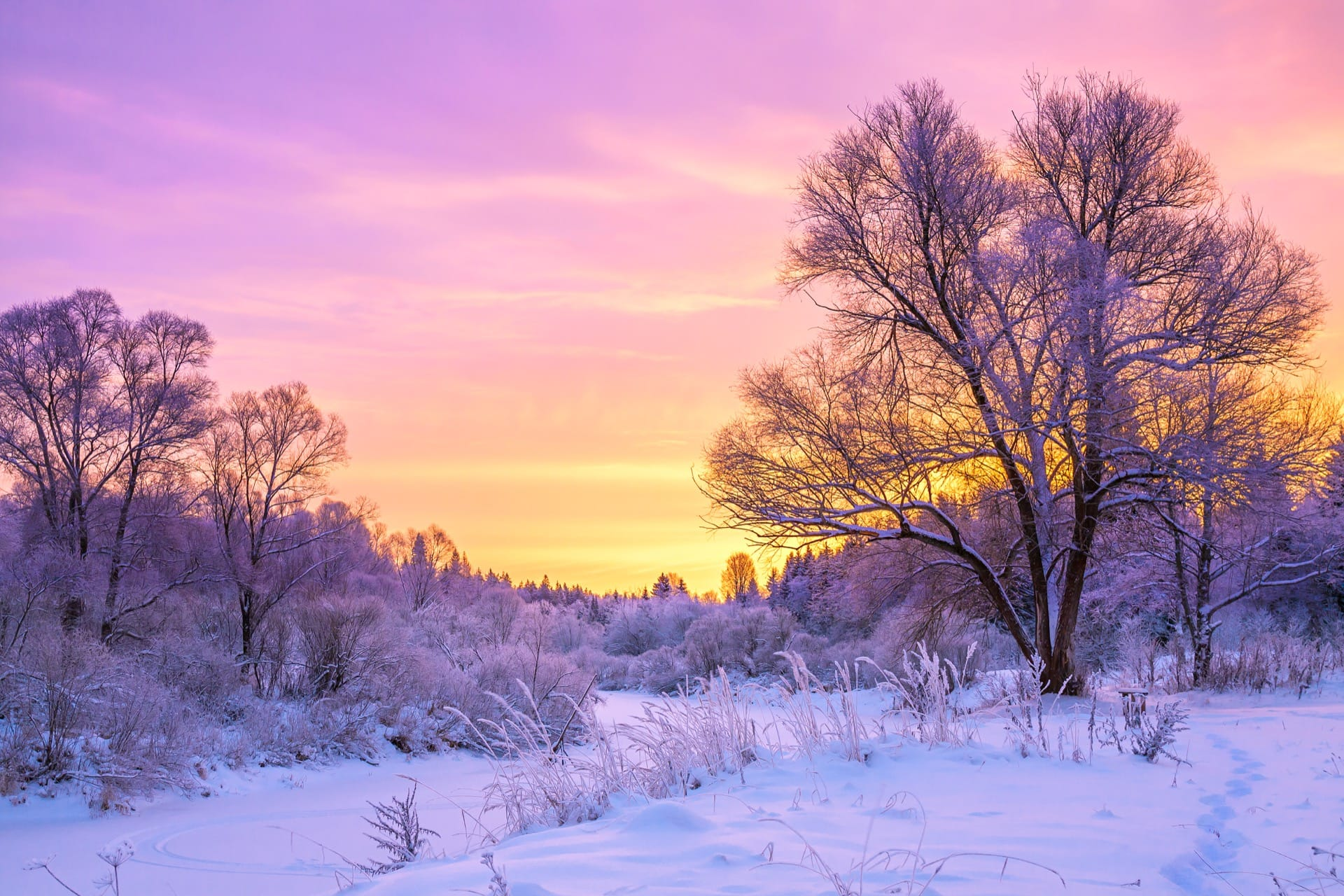 Cold winter landscape with snow and sunset - Your Health